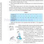 Class six 6 algebra worksheets b