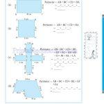 Class six 6 mensuration worksheets c