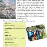 Grade five 5 Mass and Weight Worksheet k